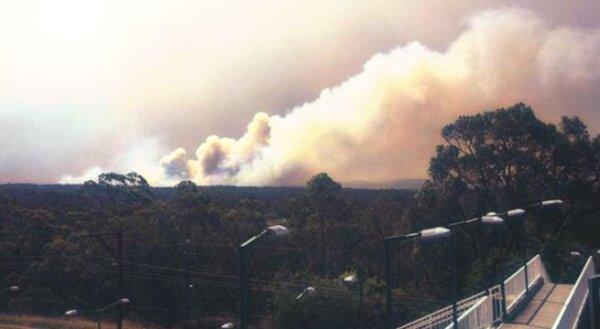 australia-incendi-tuttacronaca