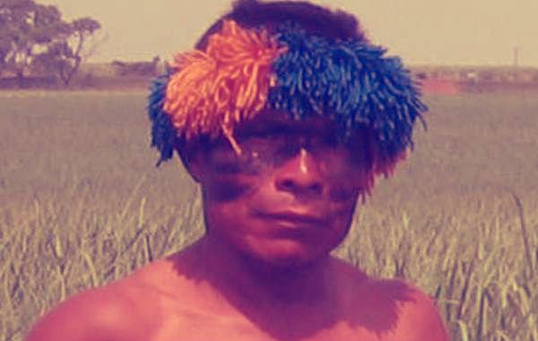 cocacola-pepsi-piantagioni-tuttacronaca