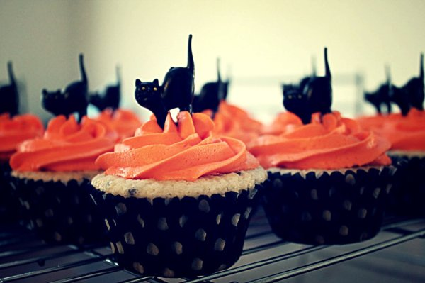 Cupcakes-day-halloween-tuttacronaca