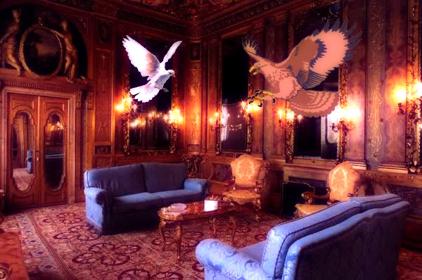 falchi-colombe-palazzo-grazioli-tuttacronaca