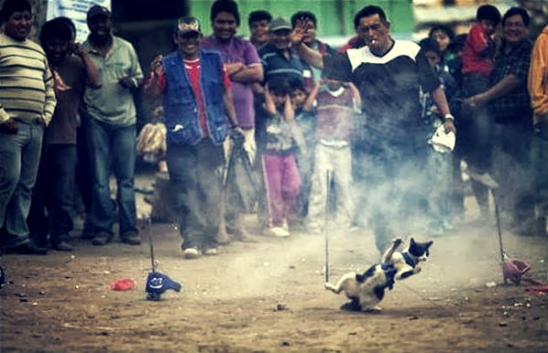 festival del curruñao-tuttacronaca