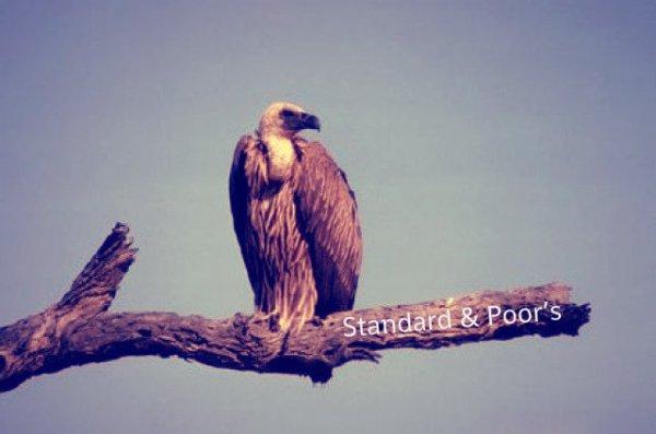 Standard & Poor's-tuttacronaca