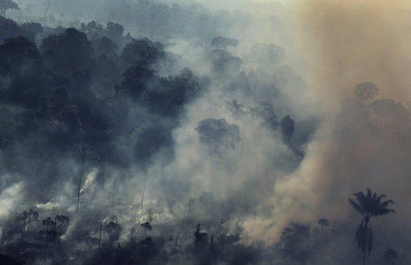 amazzonia-inferno-tuttacronaca