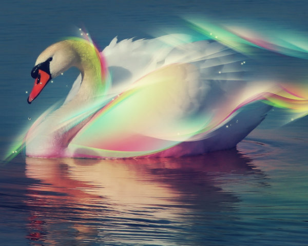 arcobaleno-tuttacronaca