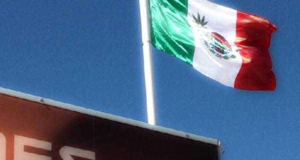 bandiera-messico-marijuana-tuttacronaca