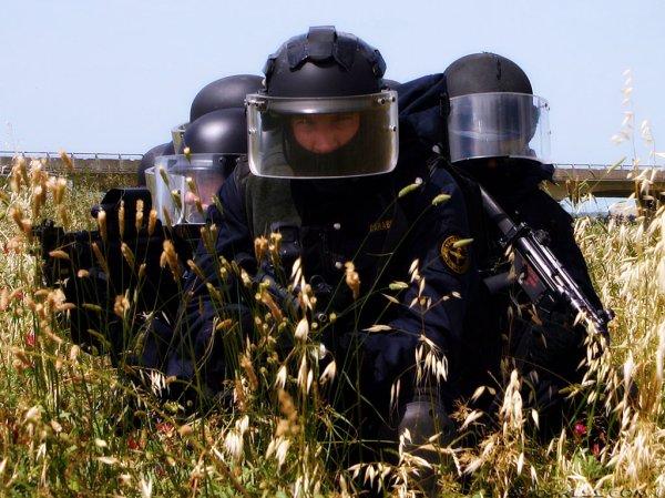 Carabinieri-GIS-tuttacronaca