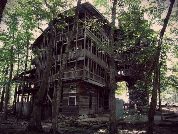 casa-albero-tuttacronaca