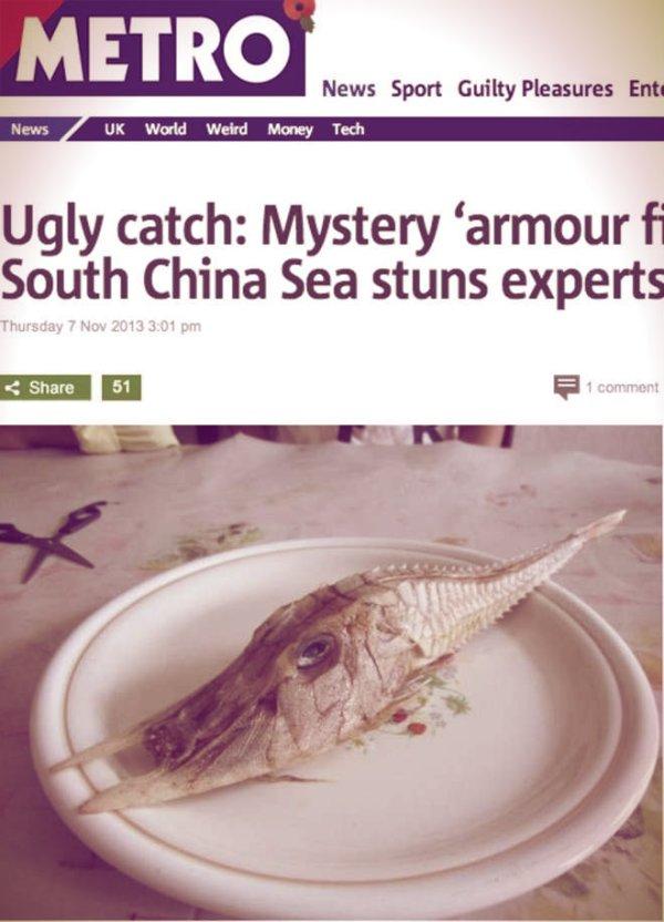cina-pesce-tuttacronaca
