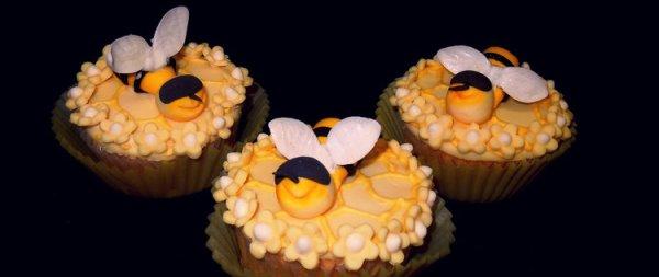 cupcake_ape