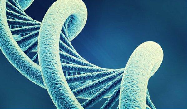 dna-gene-abbronzatura-tuttacronaca