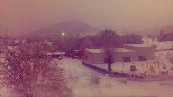 neve-aquila-tuttacronaca
