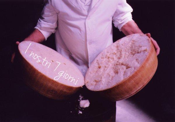 Parmigiano-Reggiano-7-giorni-tuttacronaca
