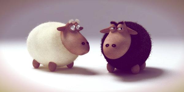 pecorelle-stressate-tuttacronaca