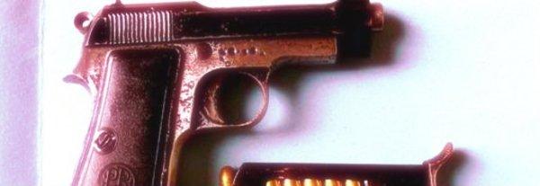 pistola-viaggio-pullman-bologna-taranto-ragazze-tuttacronaca