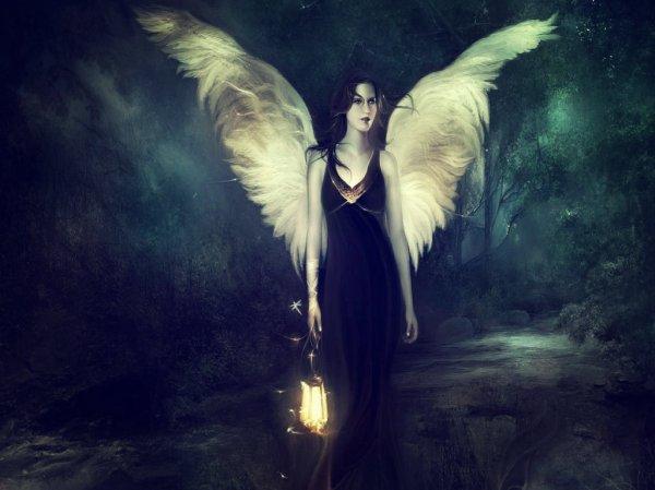 angeli-grecia-tuttacronaca