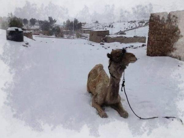 egitto-neve-tuttacronaca