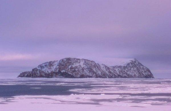 iaia nuova isola-scoperta-russia-mar-laptev-tuttacronaca
