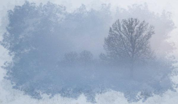 nebbia-tuttacronaca