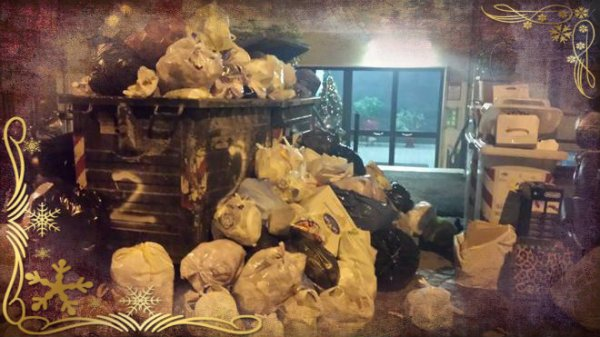 rifiuti-albero-tuttacronaca