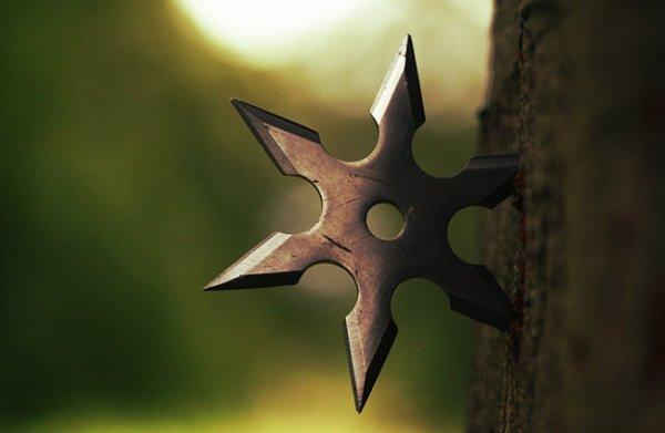 stella- ninjia-tuttacronaca