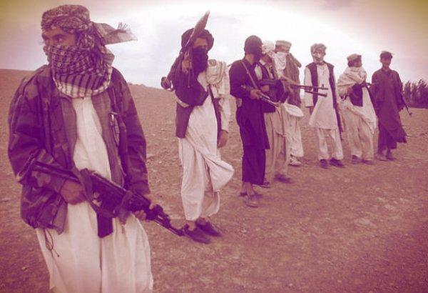 talebani-uccidono-vaccinatore-tuttacronaca