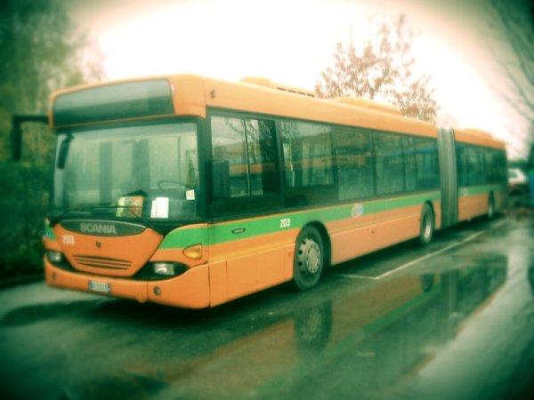 14enne-autobus-morto-tuttacronaca