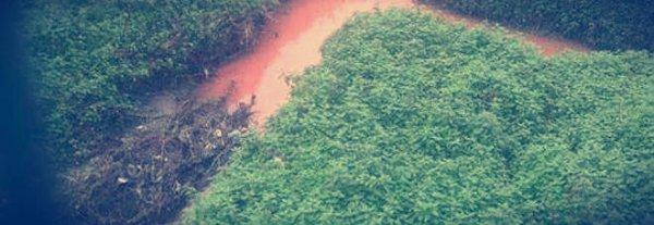 acque-rosse-tuttacronaca