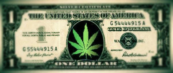 dollar-marijuana-tuttacronaca