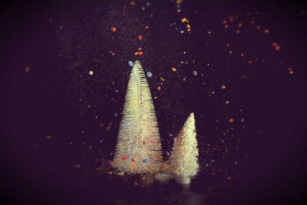 iacobelli-colori-tuttacronaca