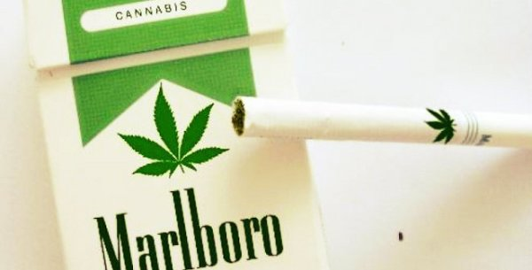 marlboro-m-cannabis-tuttacronaca