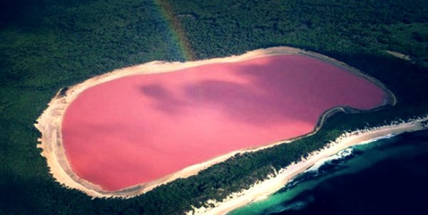 Pink-lake-tuttacronaca
