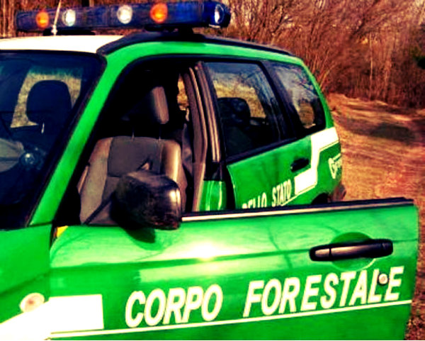 rimborsi ai forestali-tuttacronaca-sicilia-ue