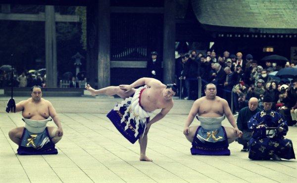 sumo-nuovo-anno-tuttacronaca
