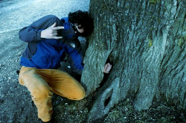 treefisting -tuttacronaca