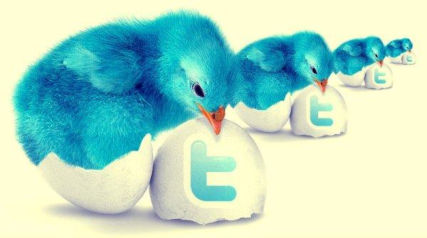 twitter_nuova-grafica-tuttacronaca