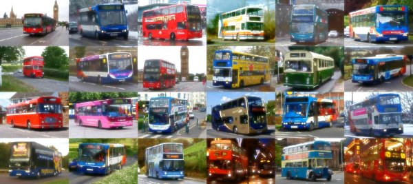 bus-tuttacronaca