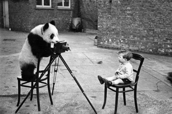 fotografo-tuttacronaca