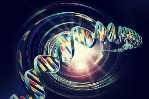 gene-omosessualità-tuttacronaca