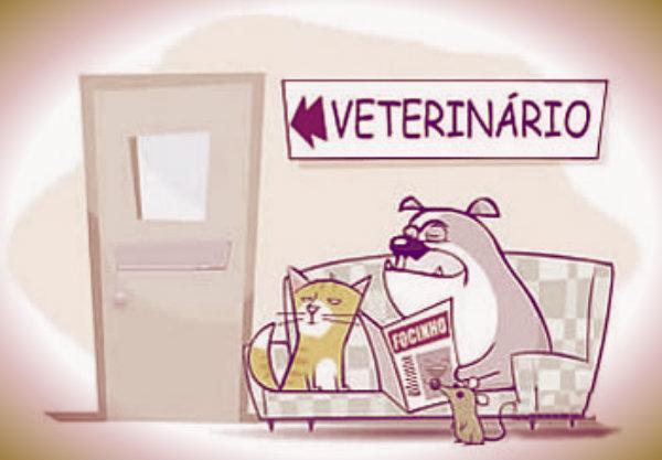 veterinario-tuttacronaca